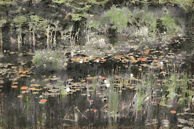 Maine Mountains Digital Art - Long Pond Maine by Gary Little