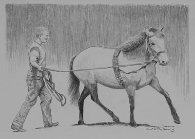 Long Reins Mallard Art Print by Tomas OMaoldomhnaigh