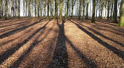 Photograph - Long Shadows by Michael Standen Smith