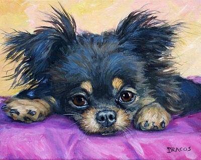 Longhaired Chihuahua Puppy Black And Tan Art Print by Dottie Dracos