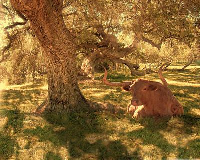 Longhorn In Sunbeams Original by Ron Hall