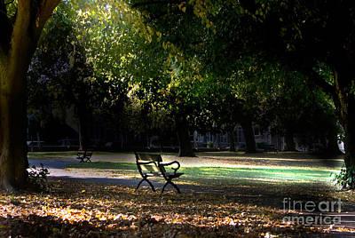 Lonley Park Bench Art Print