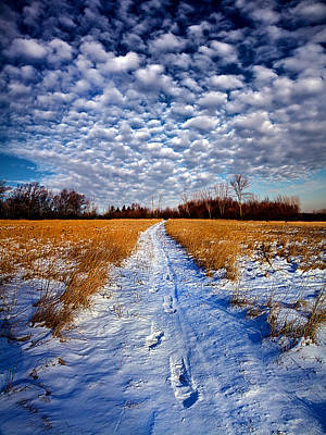 Looking Back Print by Phil Koch