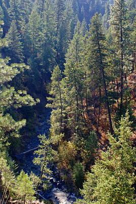 Photograph - Looking Down Into The Deep Creek Canyon Near Spokane by Ben Upham III