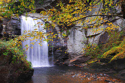 Looking Glass Falls Art Print by Alan Lenk