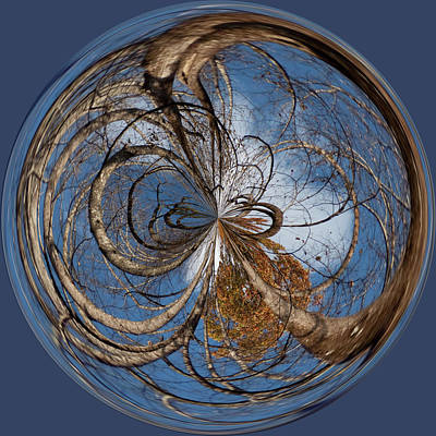 Looking Up Orb Art Print by Sandi Blood