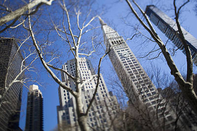 Looking Up Through Trees At Skyscrapers Art Print by Axiom Photographic