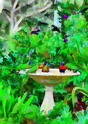 Lorikeets And Rosellas Art Print