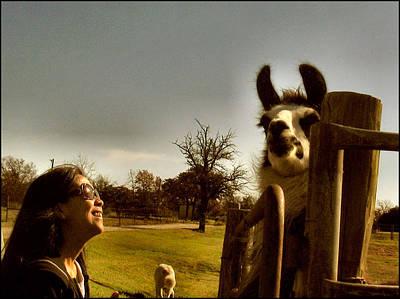 Photograph - Lorna - Emu 2009 by Glenn Bautista