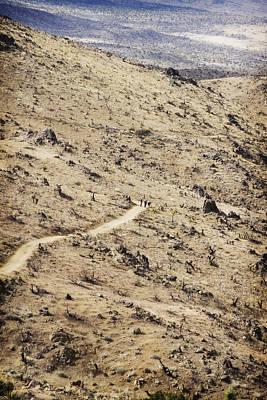 Lost Horse Mine Trail 5 Original