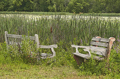 Lost In The Marsh Original by Ruth H Curtis