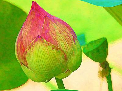 Digital Art - Lotus Dreaming 4 by Fran Woods