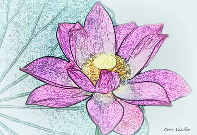 Drawing - Lotus Flower by Debra     Vatalaro