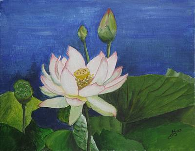 Lotus Flower Art Print by Kim Selig