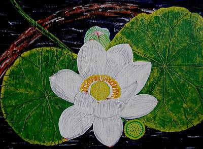 Farishields Painting - Lotus With Pod And Leaves by Far I Shields