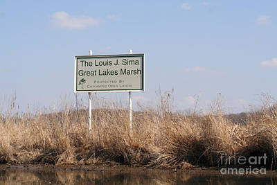 Louis J. Sima Great Lakes Marsh Art Print
