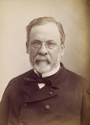 Sour Photograph - Louis Pasteur, French Microbiologist by Humanities And Social Sciences Librarynew York Public Library