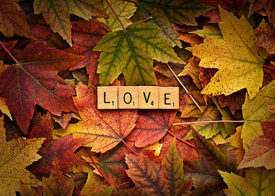 Photograph - Love-autumn by  Onyonet  Photo Studios