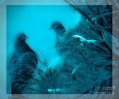 Photograph - Love Birds by Karen Lewis