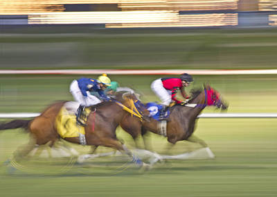 Sports Royalty-Free and Rights-Managed Images - Love of the Sport by Betsy Knapp
