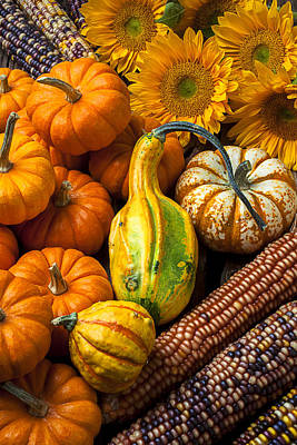 Gourds Photograph - Lovely Autumn by Garry Gay