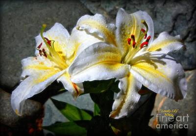 Photograph - Lovely Lily by Patrick Witz