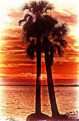 Loving Palms-the Journey Art Print by Janie Johnson