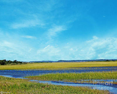 Digital Art - Low Country Marsh by Lizi Beard-Ward