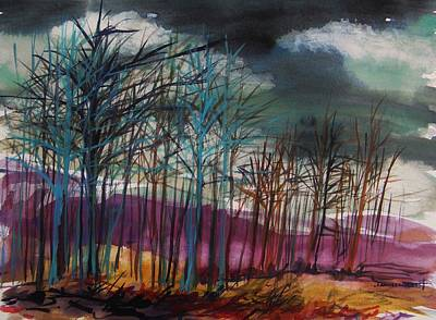 Low Gray Sky Art Print by John Williams