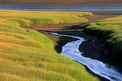 Low Tide At Sunset, Minas Basin, Kings Art Print by Ron Watts