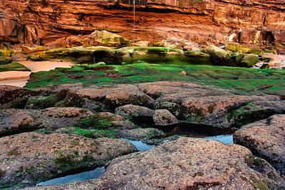 Photograph - Low Tide Rocks by Edgar Laureano