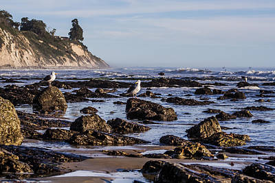 Art Print featuring the photograph Low Tide by Marta Cavazos-Hernandez