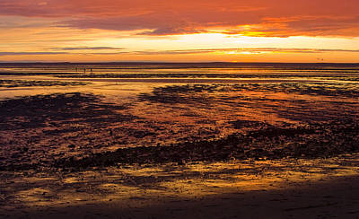 Art Print featuring the photograph Low Tide by Michael Friedman