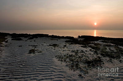 Sunrise Photograph - Low-tide Sunrise by Matt Tilghman