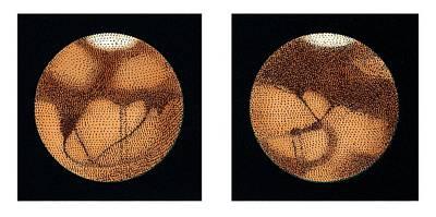 Lowell's Observations Of Mars Art Print
