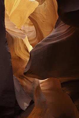Photograph - Lower Antelope Canyon Light Variations by Gregory Scott