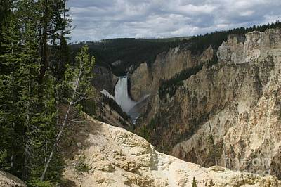Art Print featuring the photograph Lower Falls Of Yellowstone by Living Color Photography Lorraine Lynch