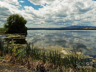 Photograph - Lower Klamath Lake by Methune Hively