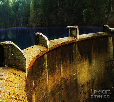 Digital Art - Lower Scotts Flat Lake Grass Valley by Lisa Redfern