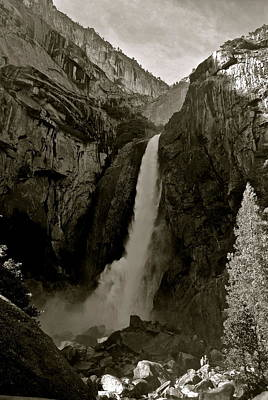 Photograph - Lower Yosemite Falls by Eric Tressler