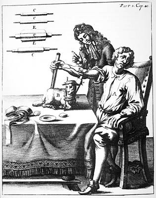Lower's Blood Transfusion, 1667 Art Print by