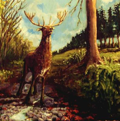 Lowland Stag Art Print by Graham Keith