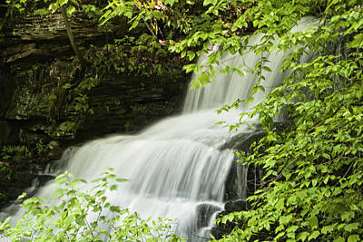 Loyalsock Waterfall Art Print