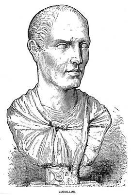 Statue Portrait Photograph - Lucius Licinius Lucullus by Granger