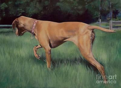 Lucy In The Field Art Print by Gloria Najecki