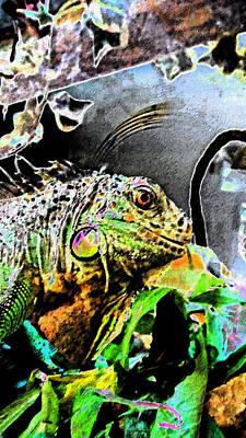 Photograph - Lucy The Iguana by Cyryn Fyrcyd