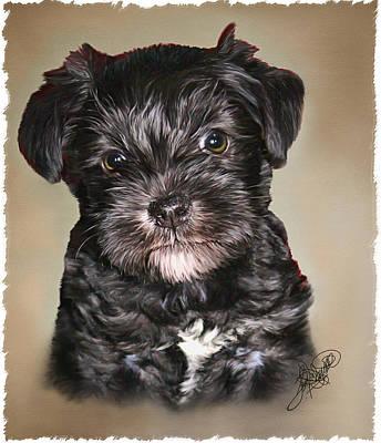 Watercolor Pet Portraits Digital Art - Lucy by Tom Schmidt