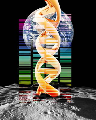Lunar Dna Library Art Print by Victor Habbick Visions