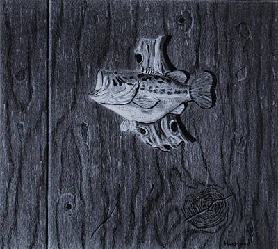Drawing - Lunker by Brian Hustead