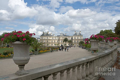 Photograph - Luxembourg Garden And Palace by Fabrizio Ruggeri